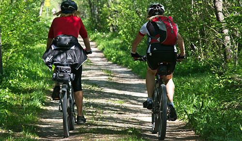 Excursions and rent of bike