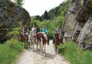 HorseRidingRilaMountainHotelElaBorovets