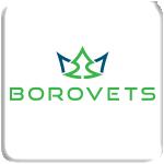 LogoBorvetsEngIconappl